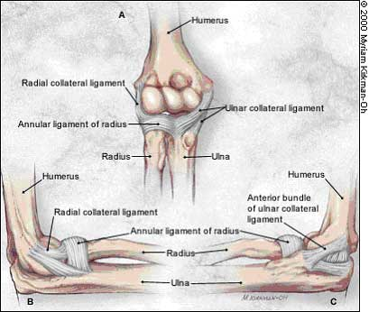 Ulnar Collateral Ligament Elbow Reconstruction