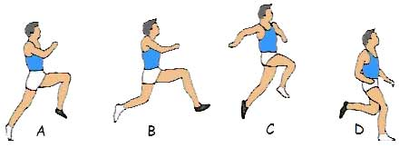 high jump western roll technique